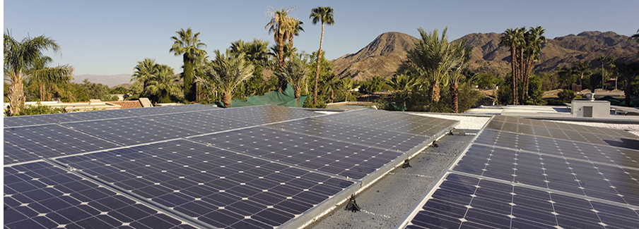 photo - Solar Panels and Palm Trees