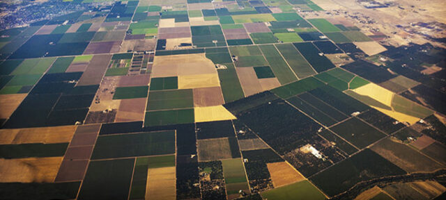 photo - Agricultural Fields in Central Valley, California
