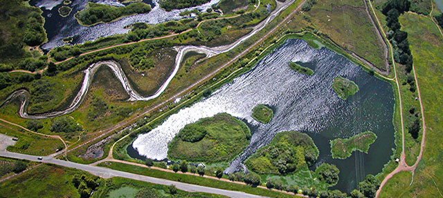 photo - Arcata Marsh and Wildlife Sanctuary. California