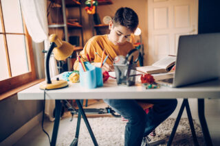 photo - Boy Studying at Desk at Home