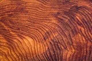 photo - Close Up of Redwood Burl Wood Grain Texture