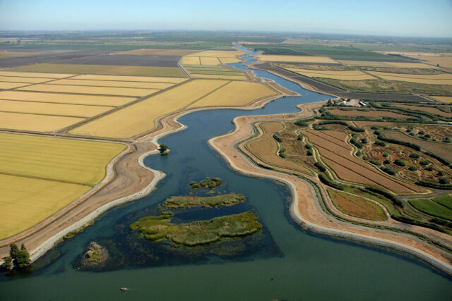 photo - Delta Farming