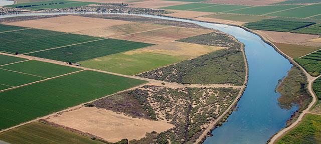 photo - Farmland Along Colorado River