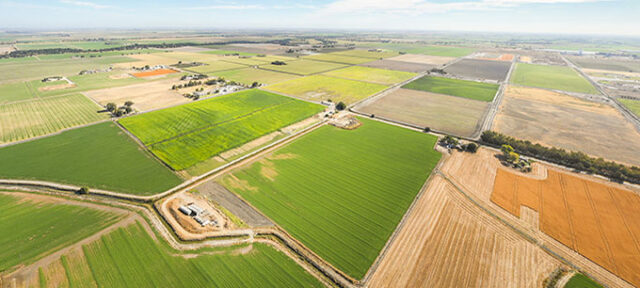 photo - Aerial View of Farmland in California