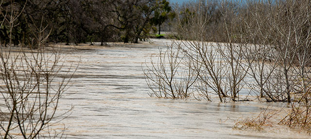 photo - Flooded River