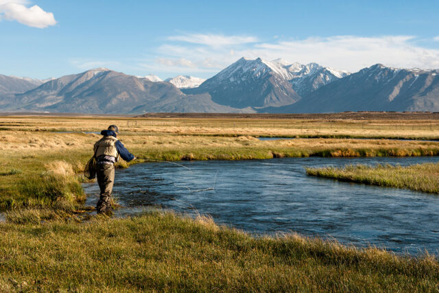 photo - Fly Fishing on the Owens River