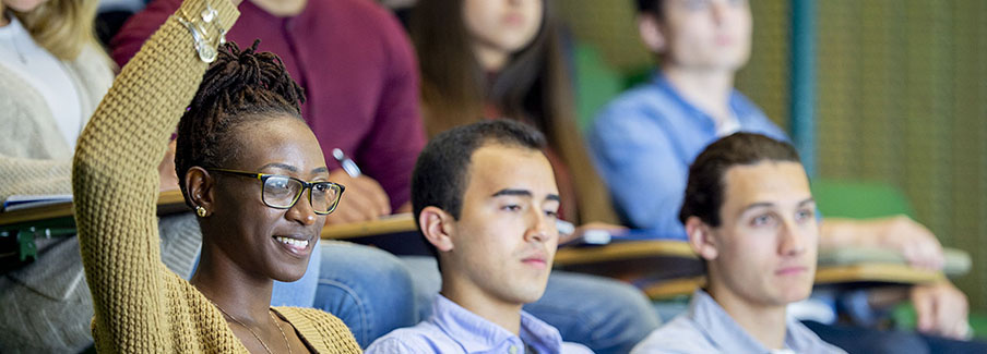 photo - Student Raising Hand in Lecture Class