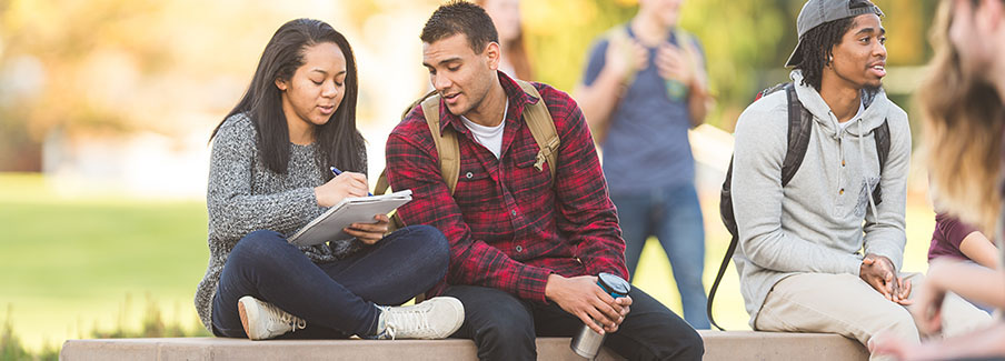 photo - College Students Studying on Campus