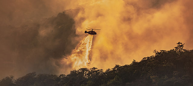 photo - Helicopter Dumping Water on Forest Fire