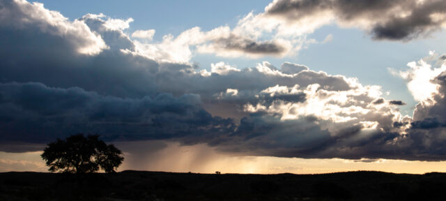 photo - Storm on the Horizon