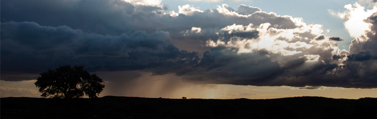 photo - Landscape Shot of a Storm on the Horizon