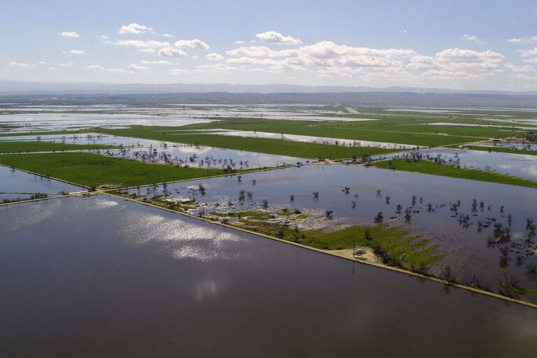 image of Kern Water Bank recharge ponds