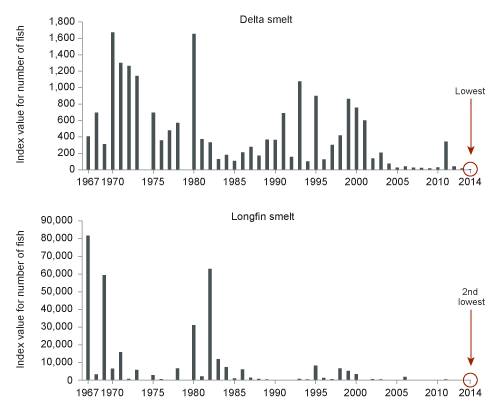 Figure 4. Delta Fish Species Plunged During Droughts