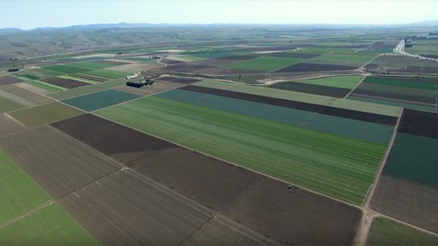 Photo of San Joaquin Valley farmland