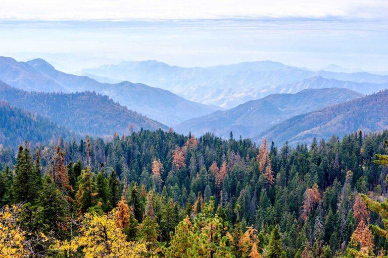 photo - Sequoia National Park Mountain Landscape in Autumn