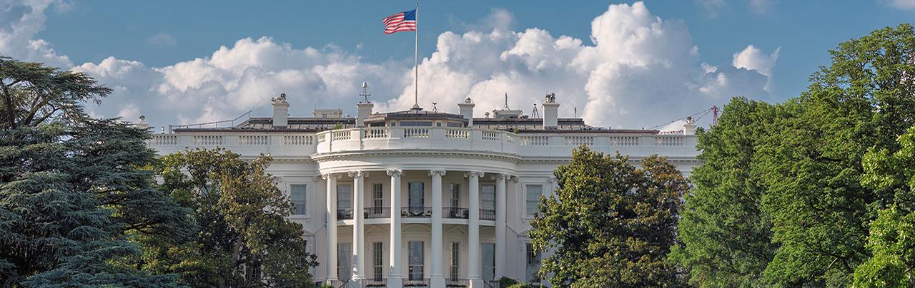 photo - The White House in Washington DC