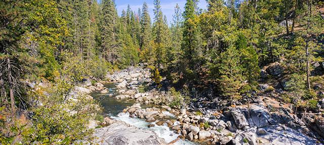 photo - Stanislaus River in Calaveras Big Trees State Park, California