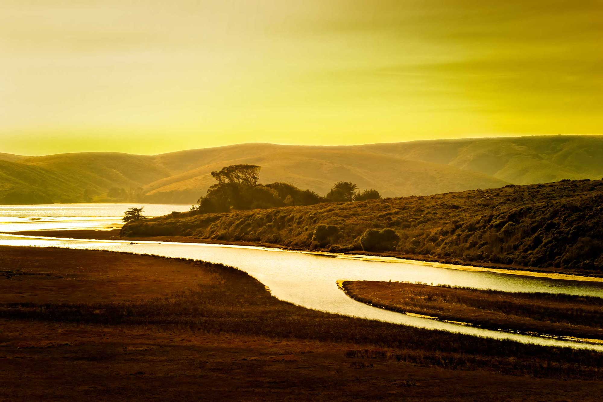 Photo - Stream of Gold, Sunset Landscape In California