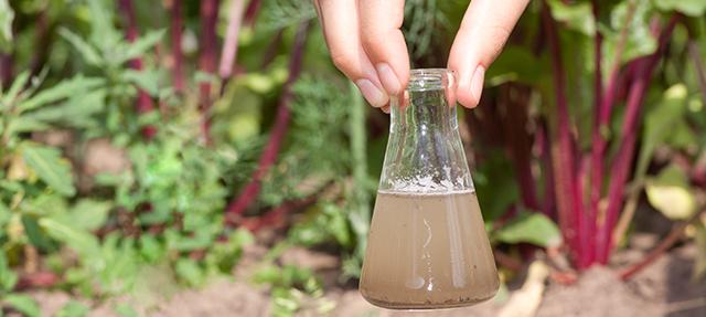 Photo Water Quality Beaker