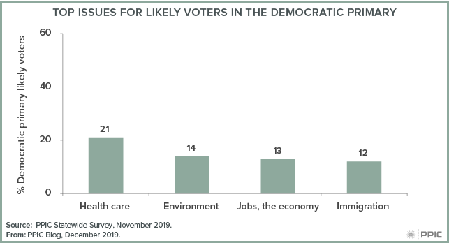 figure - Top Issues for Likely Voters in the Democratic Primary