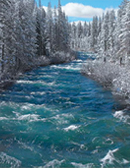photo - White Water Rapids in California Winter