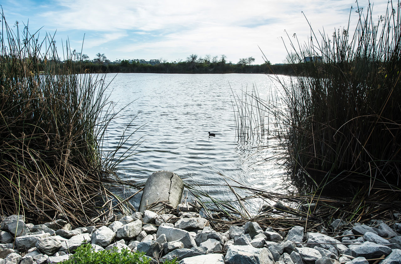California S Water Quality Challenges Public Policy