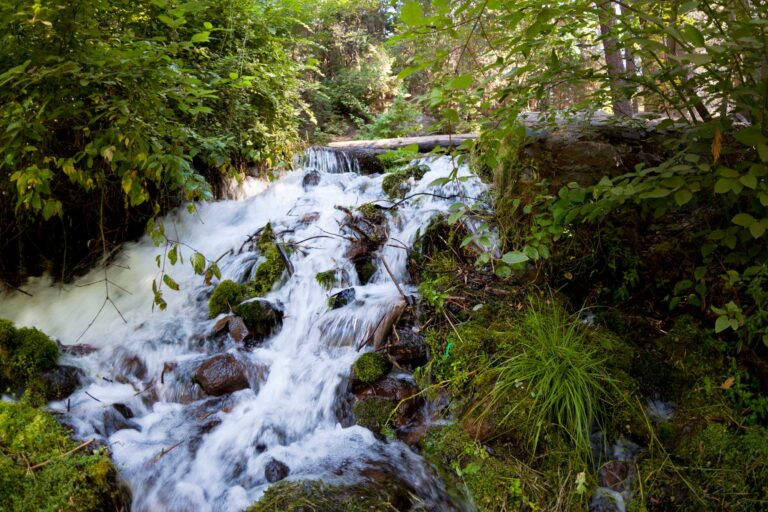 photo - Waterfall at the Sacramento River Headwaters
