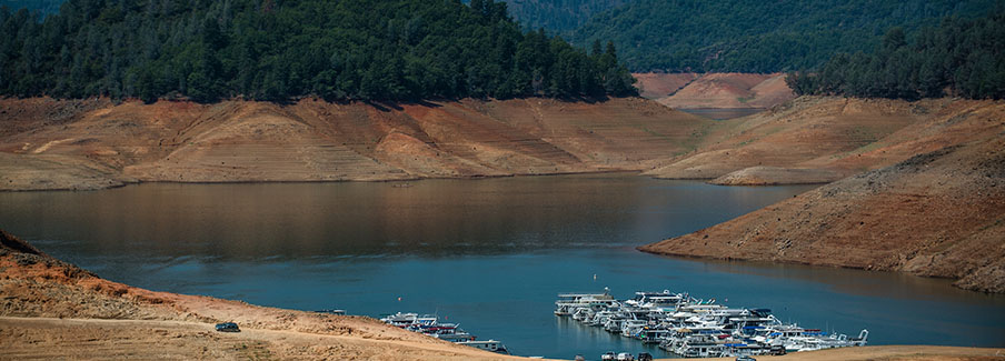 photo - Lake Shasta