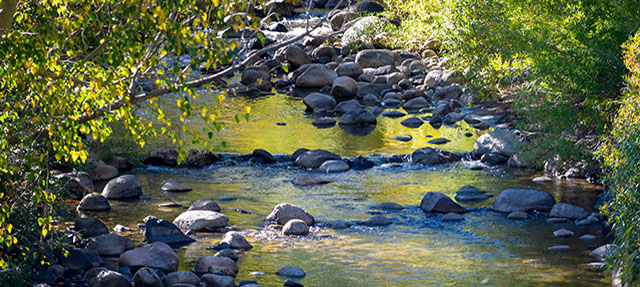 photo - West Fork of the Carson River, Alpine County, California