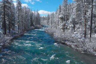 Whitewater Rapids in California Forest, in Winter