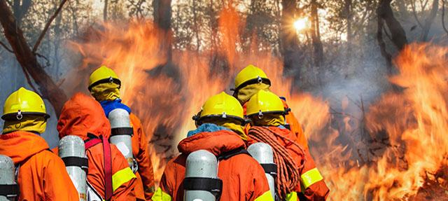 photo - Wildfire Team